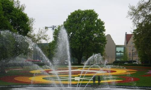 Poznańskie Dywany Kwiatowe