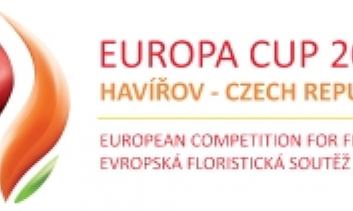 Europa Cup 2011