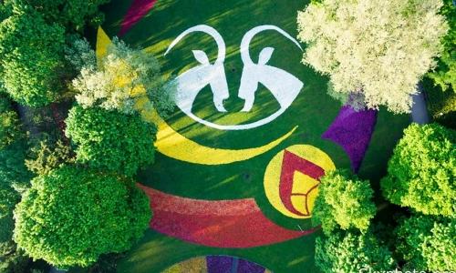 III Poznańskie Dywany Kwiatowe