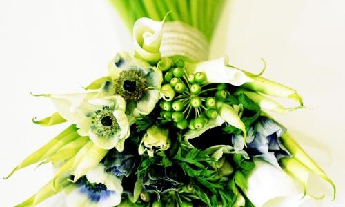 Pokazy Florystyczne Targi Special Days i GARDENIA