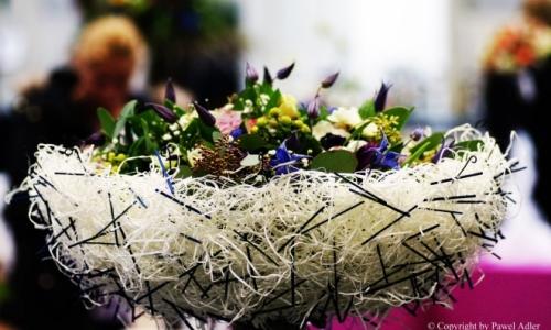 Konkurs dla Kwiaciarń 2018