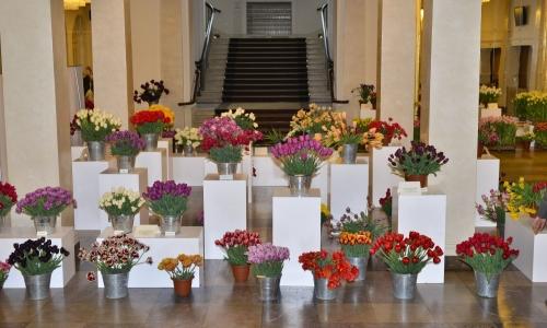 XXII Wystawa Tulipanów